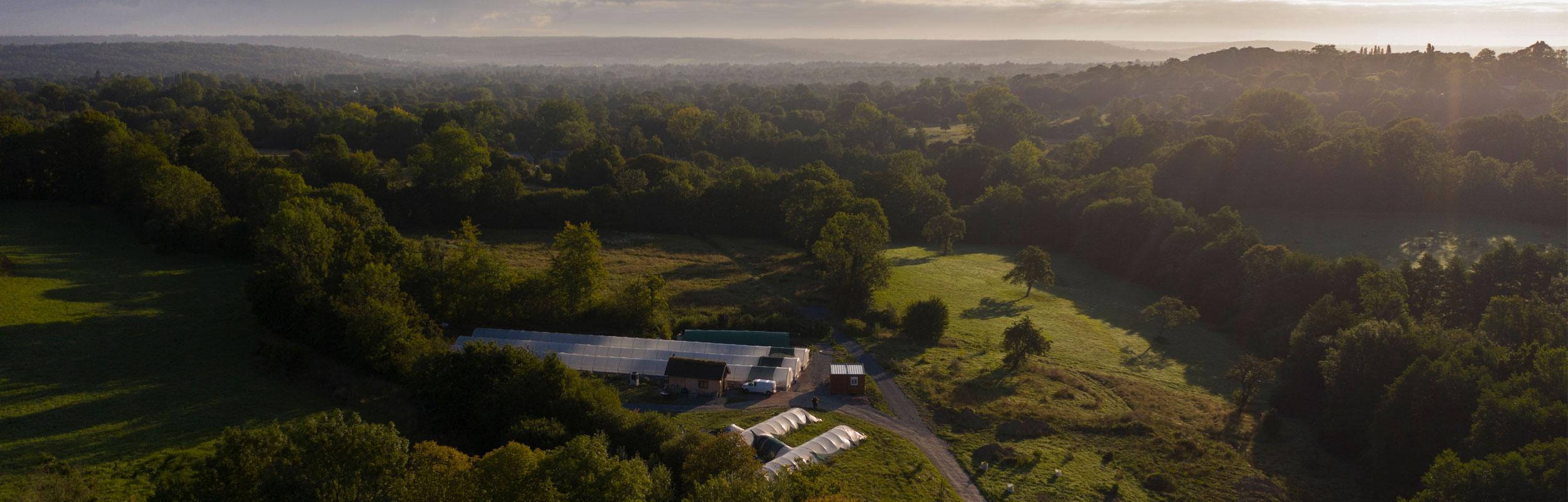 Notre ferme de spiruline au soleil levant en pleine nature