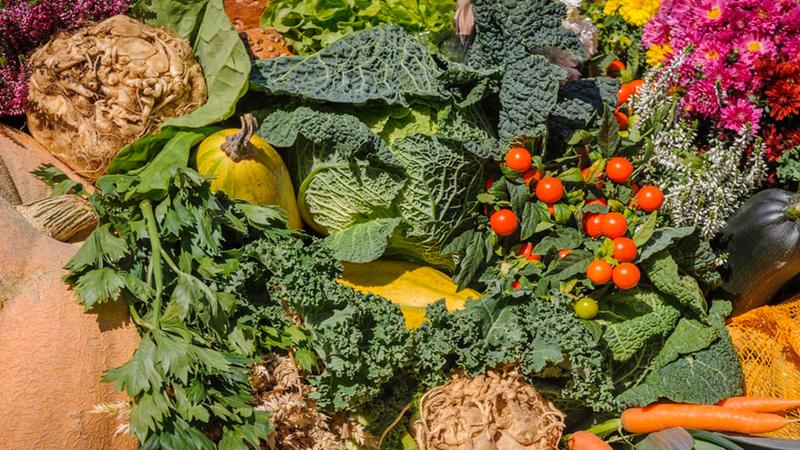 mélange-de-légumes-verts-alcalins-pour booster-son-immunité